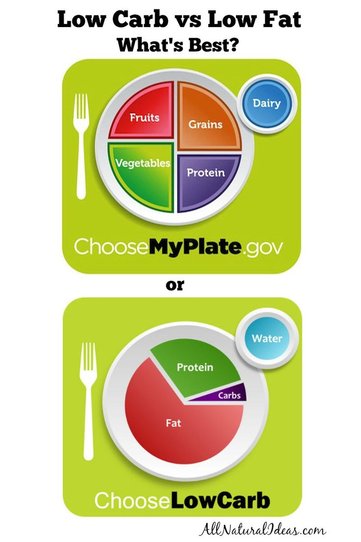 Takes the Best low fat diet chance create