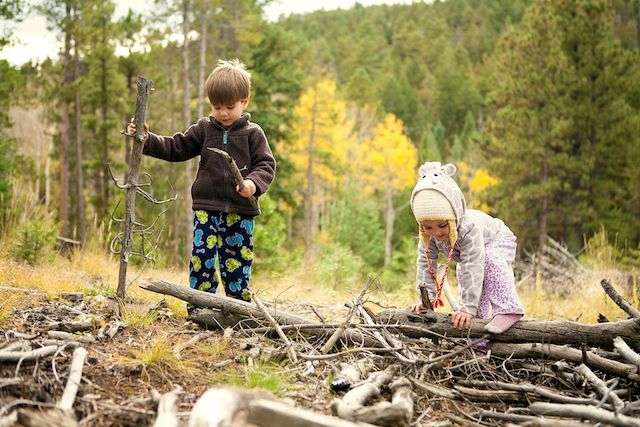Make that stroll in the woods even more thrilling for every tiny trail trekker. This list will have them looking up and down for everything from moss on a rock to jumping fish.