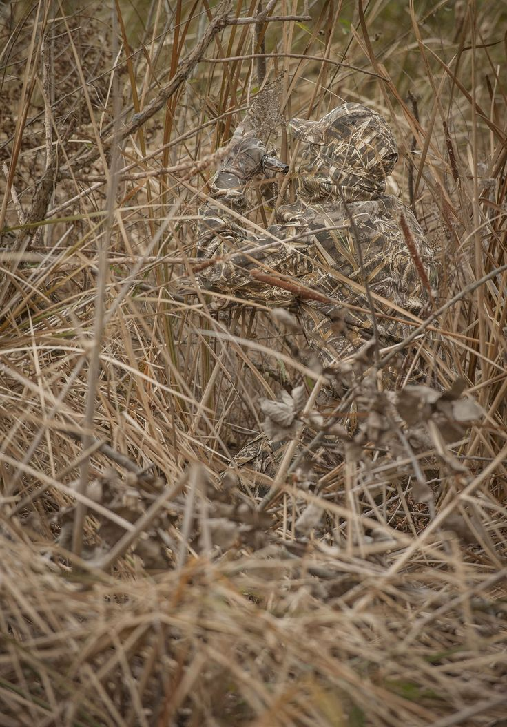 17 Best Images About Game Bird Enthusiast On Pinterest