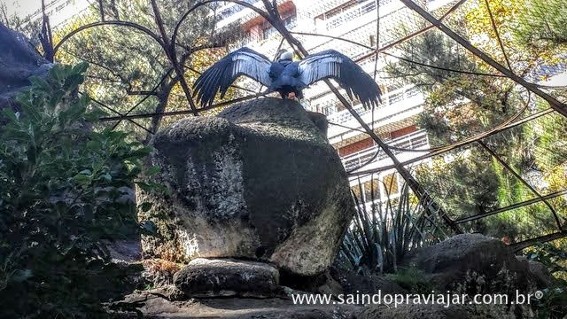 Zoo / Buenos Aires / Argentina / Maio 2015