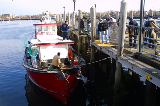 203 best images about life in brooklyn on pinterest for Brooklyn fishing boat