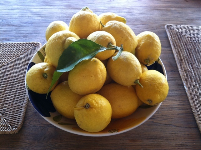 Lemons from Caroline's garden in Benissa