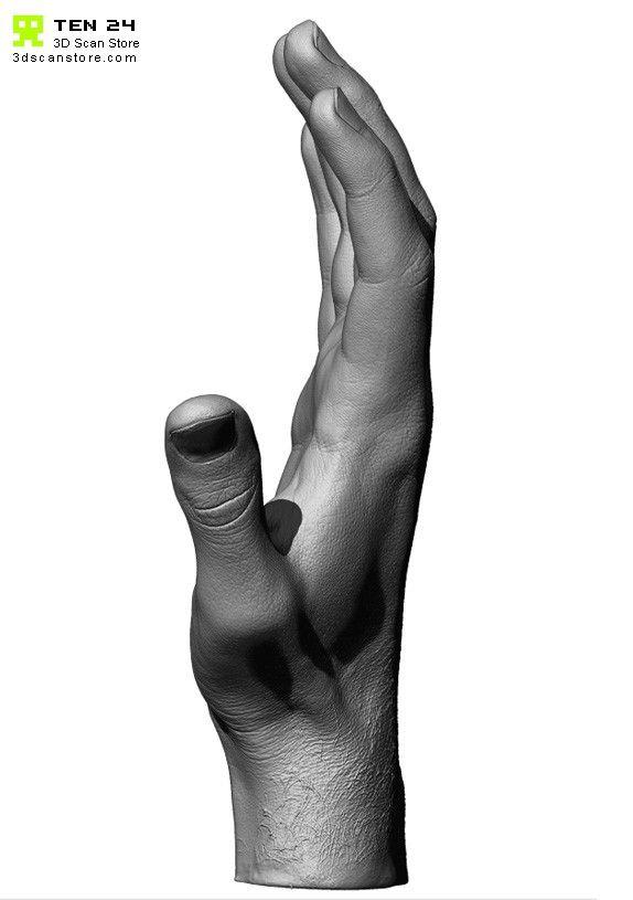 handscan01_relaxed8.jpg (574×815)