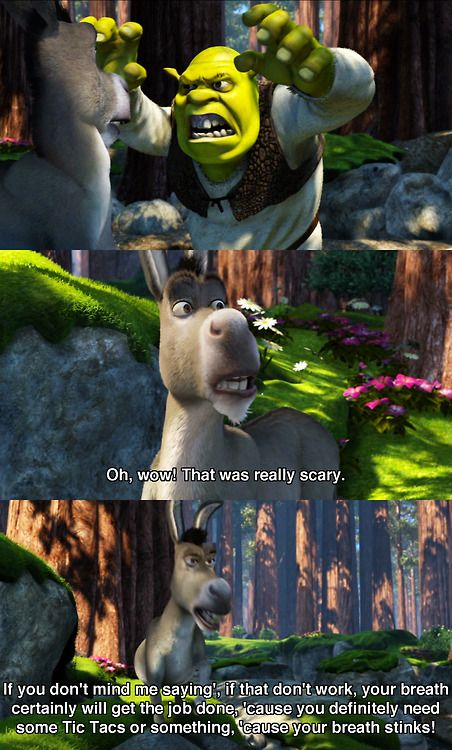 The sassiest and most hilarious character in Shrek: Donkey.