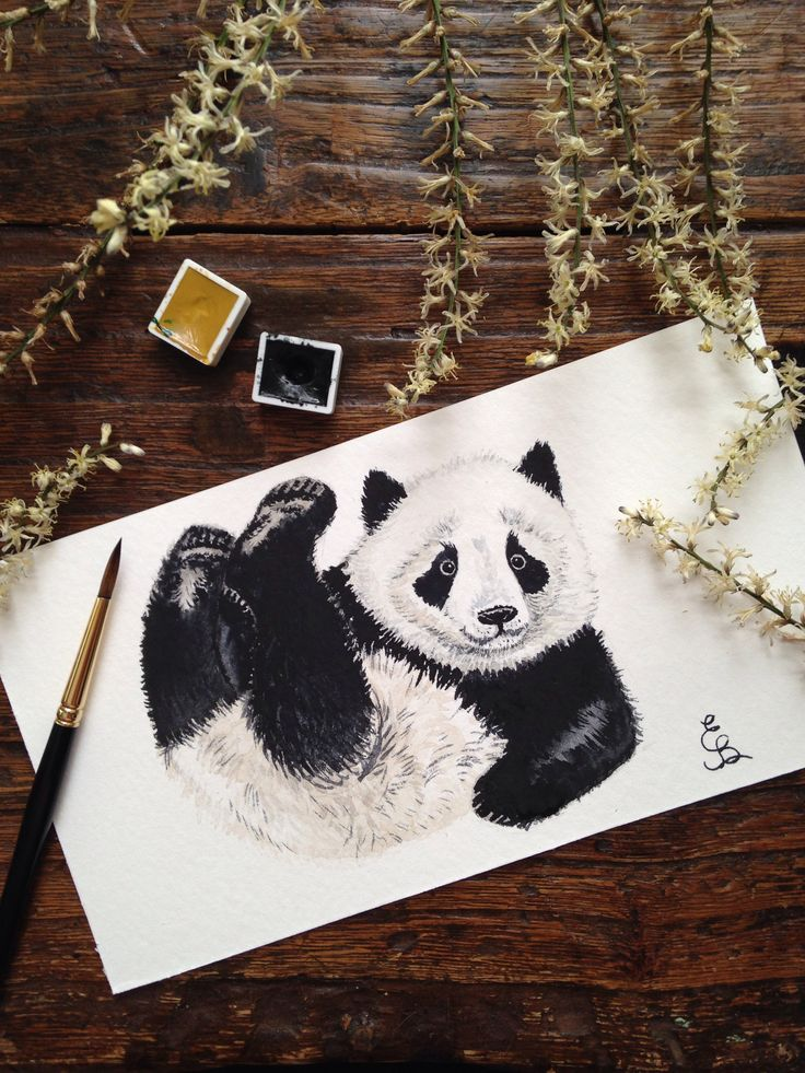 Watercolor aquarelle painting panda by Eli Bichita