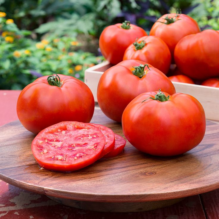 Better Boy Tomato - Fruit size: 16 oz, Matures: 70 to 75 days after planting, Spacing: 36 inches apart, Plant size: 5 to 8 feet, Plant type: Indeterminate (Planted one in my garden this year. Pinning for future reference to remind me to buy them... lol... Deb)