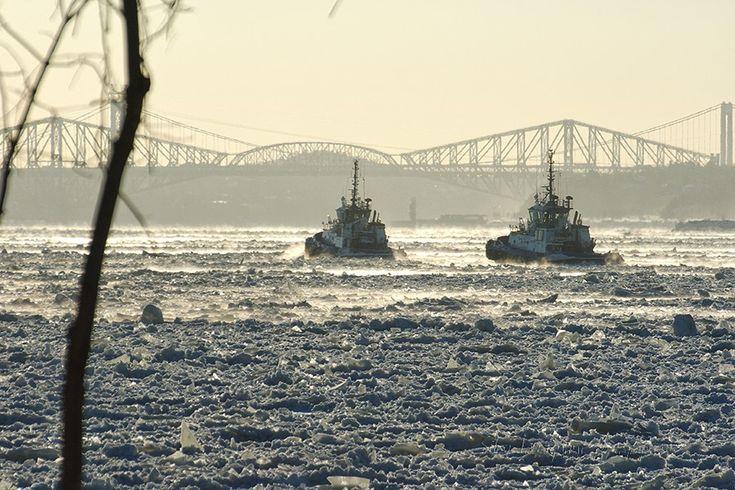 Silvy Tousignant photographie - Remorqueurs sur le fleuve St-Laurent