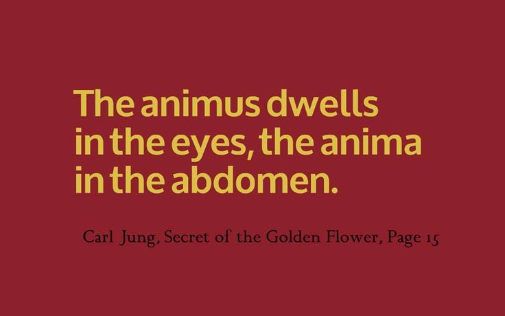 The animus dwells in the eyes, the anima in the abdomen. ~Carl Jung, Secret of the Golden Flower, Page 15 The animus, on the other hand, is the higher soul; after death it rises in the air, where at first it is active for a time and then evaporates in ethereal space, or flows back into the reservoir of life. In living men, the two correspond in a certain degree to the cerebral and sympathetic nervous system. ~Carl Jung, Secret of the Golden Flower, Page 15