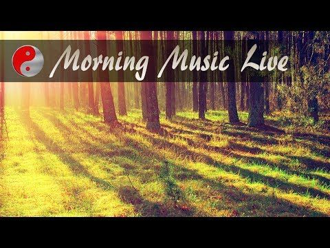 🔴 Morning Music Instrumental: Relaxing Live Stream Music Playlist, Royal...