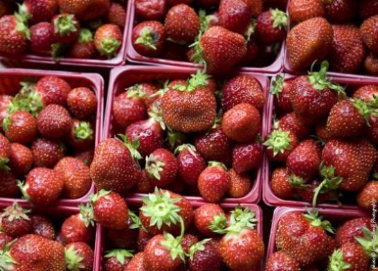 Blue Hill Farm Berries