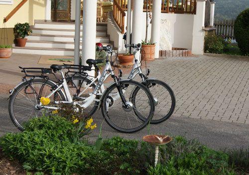 Erkunden Sie das Kärntner Seengebiet mit unseren E-Bikes. Mit einer Reichweite von 150 km unterstützt Sie der Elektroantrieb bei den teilweise fordernden Steigungen der Voralpen.