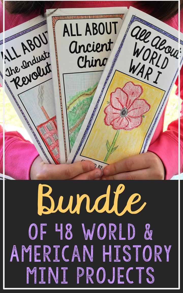 BUNDLE of 48 World and American History