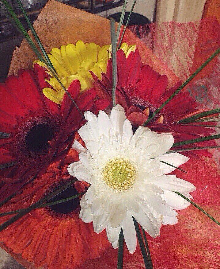 Flowers)