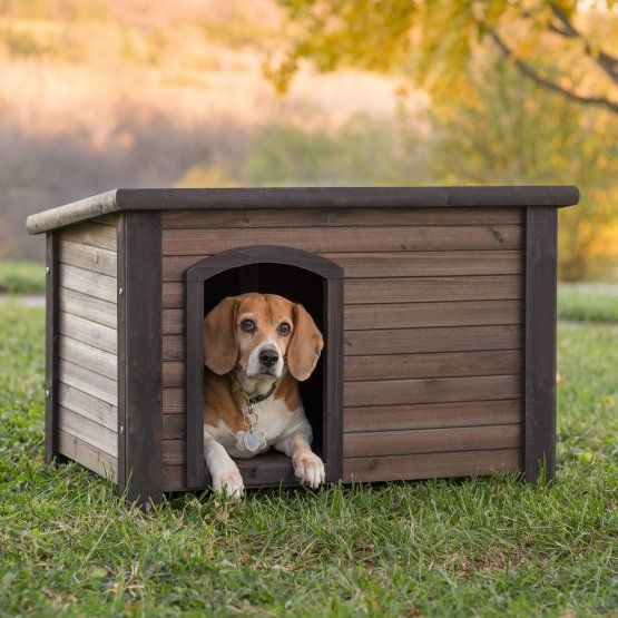 Boomer & George Log Cabin Dog House with Stainless Steel Bowls
