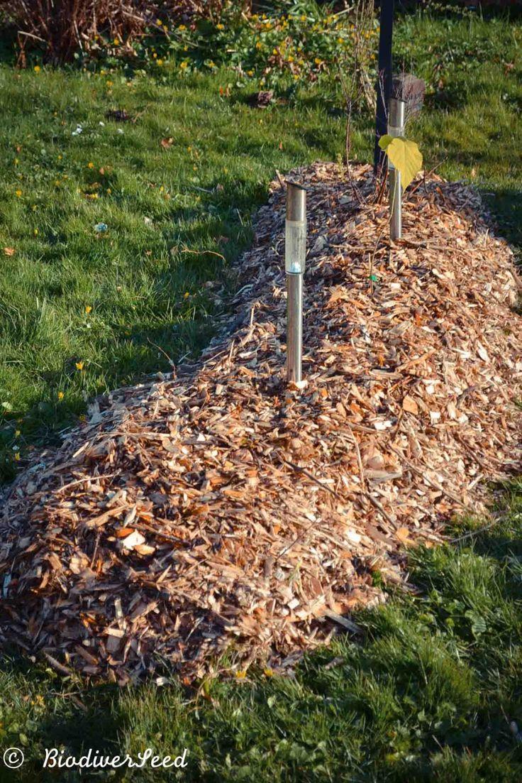 Biodiverseed Hugelkultur Hugelkultur Meaning Hill