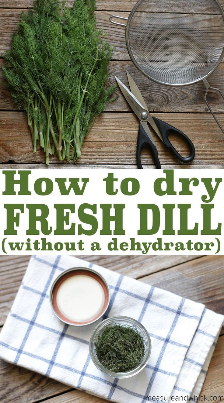 Measure & Whisk: Real food cooking with a dash of minimalist living: How to Dry Fresh Dill (without a dehydrator)