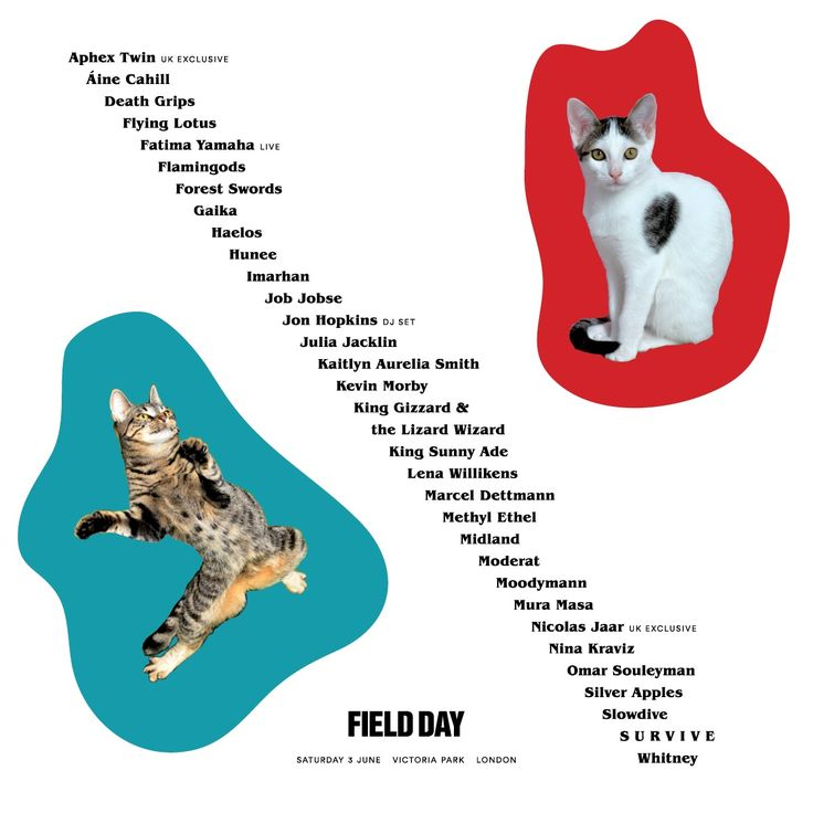 Image result for field day london