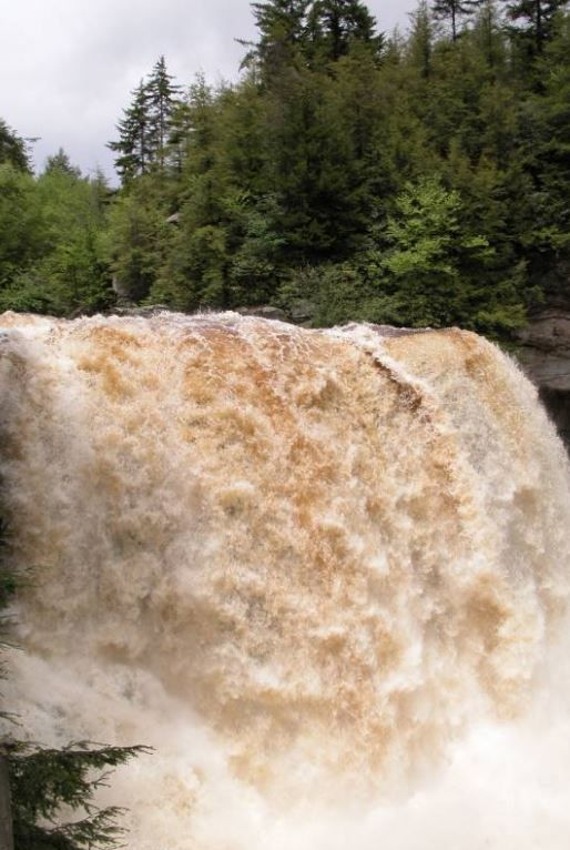 Blackwater Falls is in Blackwater Falls State Park near Davis, West Virginia.
