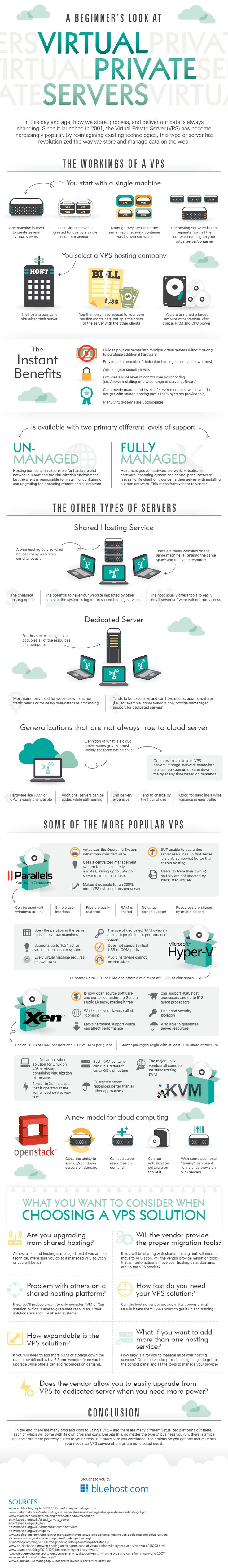 A Beginners Look At Virtual Private Servers   Infographics Display