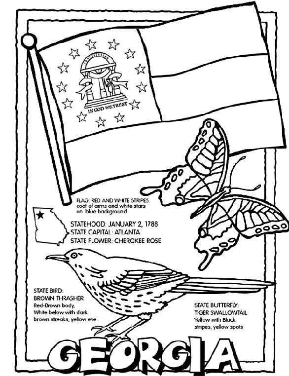 80 best States coloring pages images on Pinterest 50 states