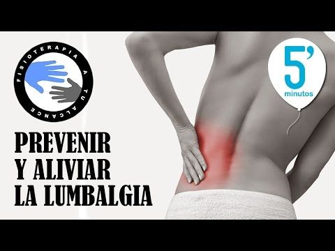 Ejercicios para aliviar y prevenir la lumbalgia o dolor lumbar en 5 minutos - YouTube