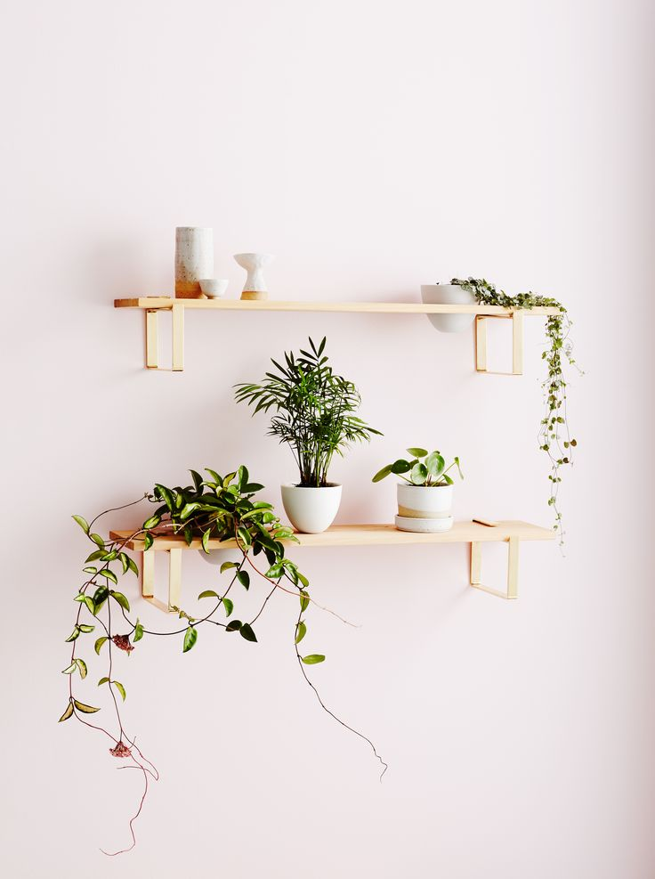 Ivy Muse HOMEBODY Collection; Plant Shelf with Brass Brackets
