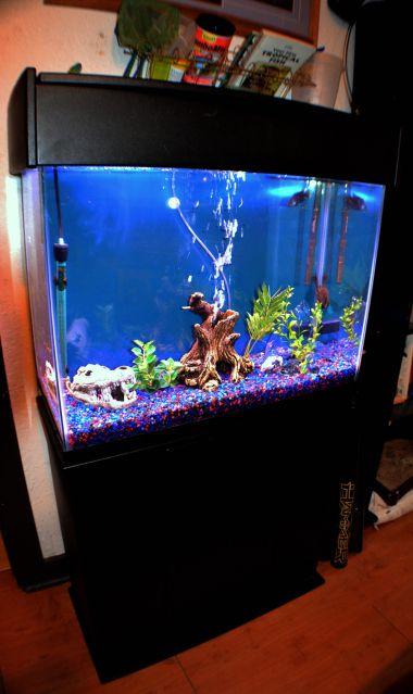 52 best fish tank images on pinterest fish aquariums for Star wars fish tank decorations