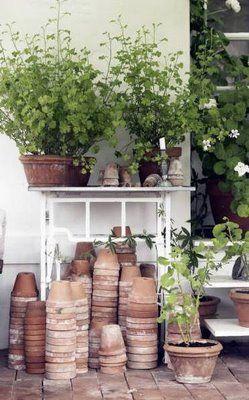 love old garden pots