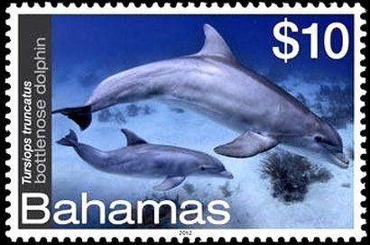 Francobollo: Common Bottlenose Dolphin (Tursiops truncatus) (Bahamas) (Vita marina) Mi:BS 1442,Yt:BS 1437,Sg:BS 1615