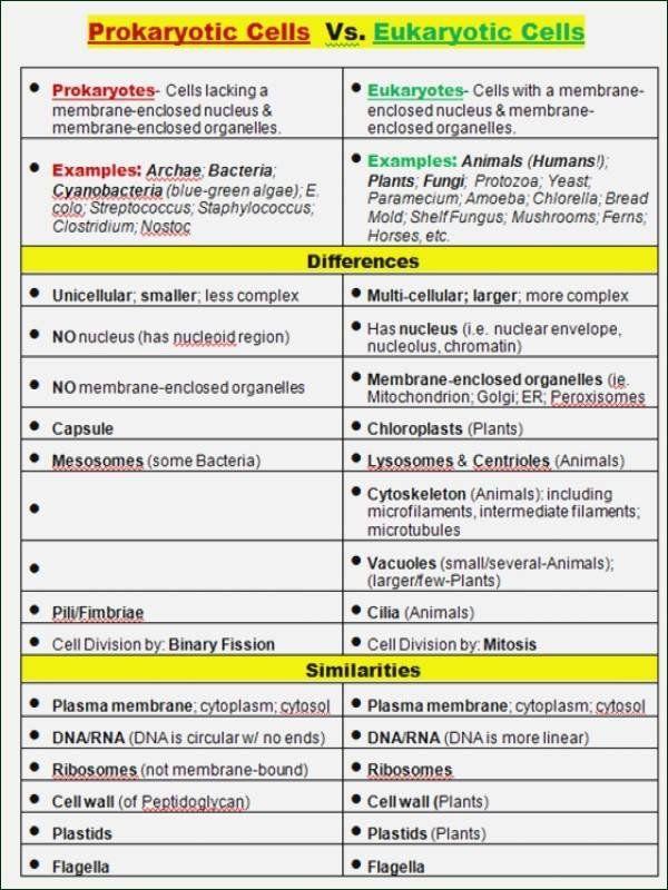 Prokaryotes Vs Eukaryotes Worksheet Inspirational Control Gene Expression In Prokaryote Pogil Biology Classroom Biology Lessons Study Biology