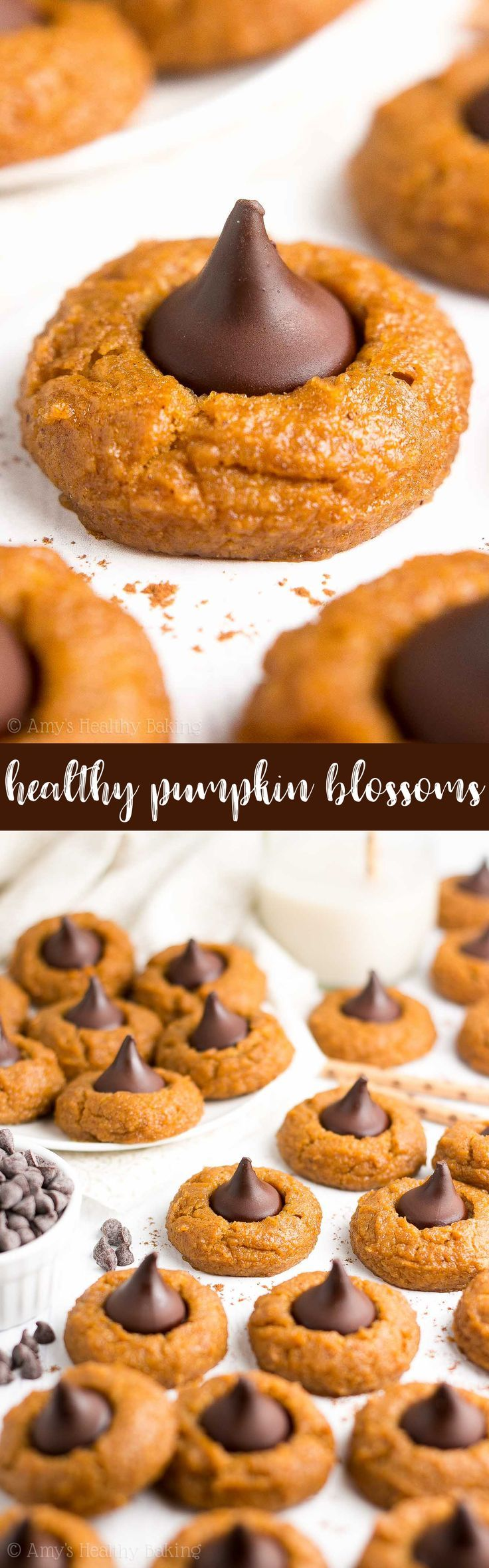 {HEALTHY!} Pumpkin Blossoms -- just 61 calories! Sweet pumpkin cookies + chocolate kisses in the center = PURE BLISS! Perfectly chewy, easy to make & 100% the BEST pumpkin cookies you'll ever eat! #recipe