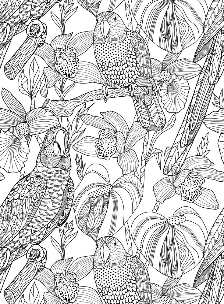 colour away homelifes new colouring in book