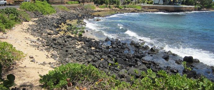 """Prince Kuhio's (PK's) Beach: South Shore:   a favorite for surfers. When the water is calm, snorkeling can be really nice (usually in the winter). Shore is small and narrow, not a good beach for shore activities. Some times the sand is nearly all under water. a great place to sit for a while and watch surfers catch a few waves.    best  place to watch surfers is from the Beach House Lawn, just along the sidewalk from Lawai Beach.   Prince Kuhio Beach is commonly misidentified as """"Lawai…"""