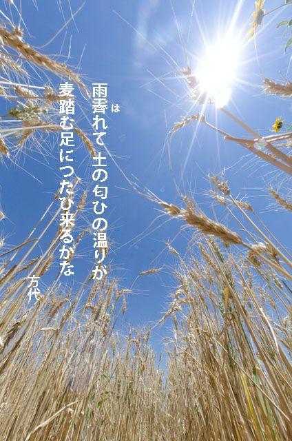 山崎方代 短歌 雨霽れて 土の匂ひの 温りが…