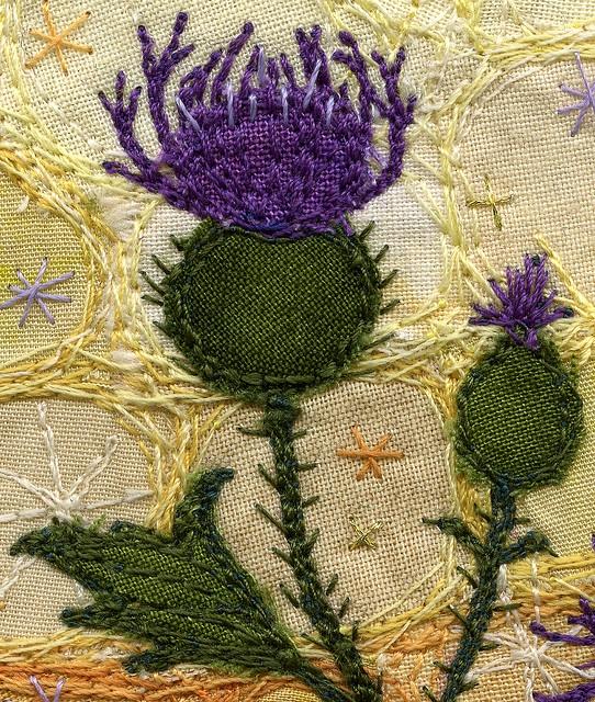 Knapweed, detail shot by Kirsten Chursinoff