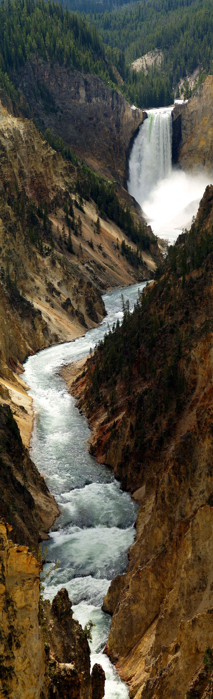 Lower Falls Yellowstone National Park From Artists Point