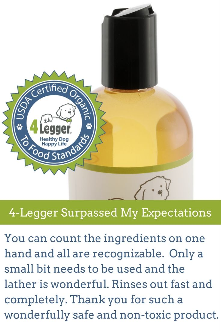 Simple ingredients of organic and essential oils, aloe vera https://www.4-legger.com/collections/all/products/lemongrass-aloe-organic-dog-shampoo  Give Your Dog a Healthy Bath!
