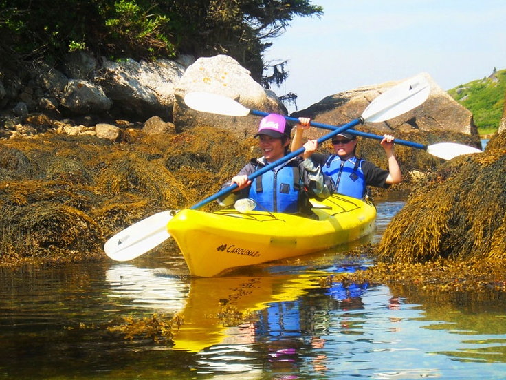 A tight squeeze through the seaweed covered rocks, St. Margaret's Bay, Nova Scotia