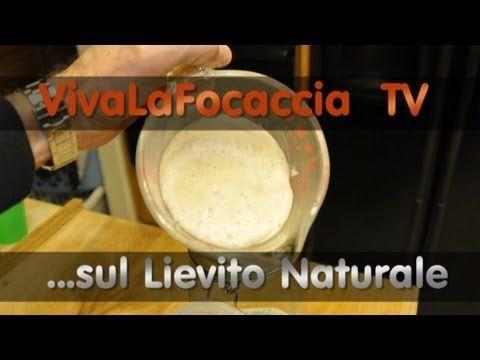 VivaLaFocaccia - TV - Puntata 7 - Tutte le Risposte sul Lievito Naturale - YouTube