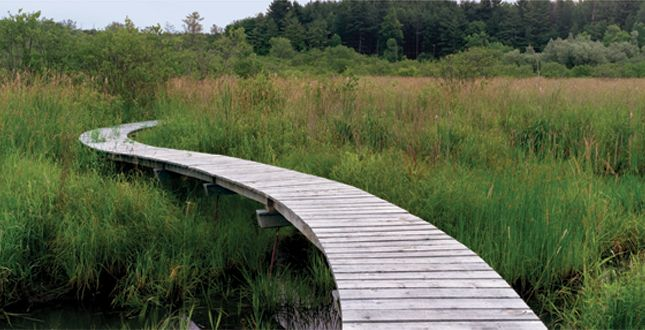 Half-Mile, Hand-Built Line: Berkshire Boardwalk designed by Reed Hilderbrand in Stockbridge, Mass.