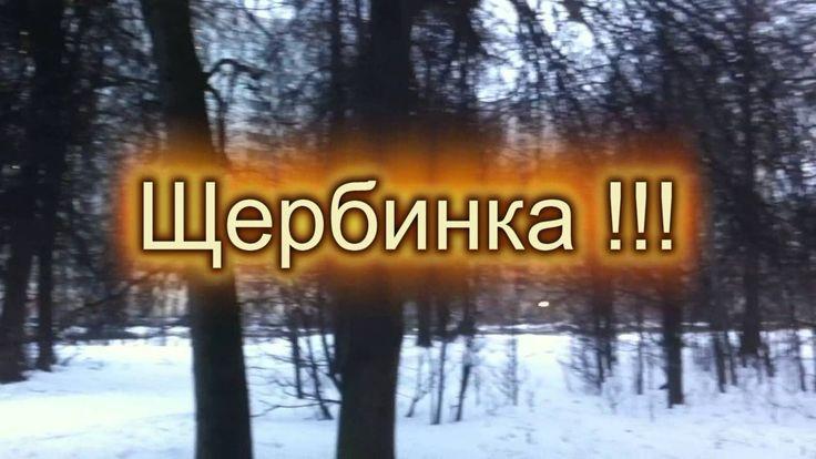 Щербинка. Зимний лес в Щербинке.