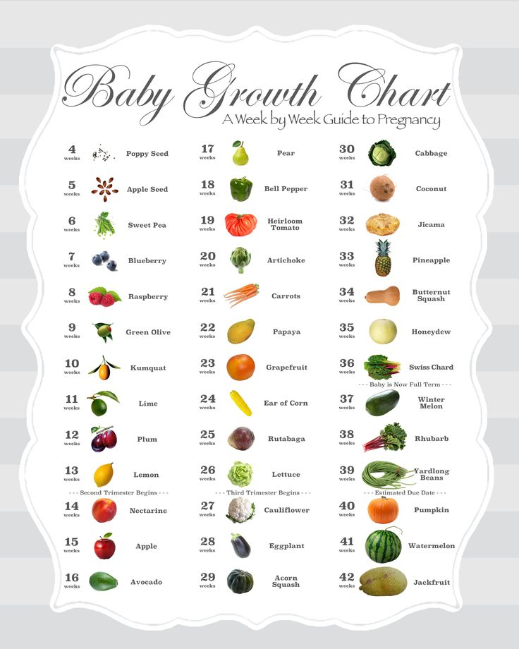 Best 25+ Trimester chart ideas on Pinterest | Pregnancy ...