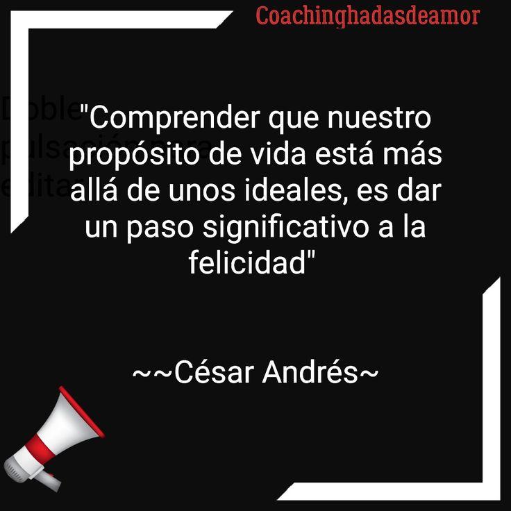 """César Andrés   """"Comprender que nuestro propósito de vida está más allá de unos ideales, es dar un paso significativo a la felicidad""""    ~~César Andrés~"""