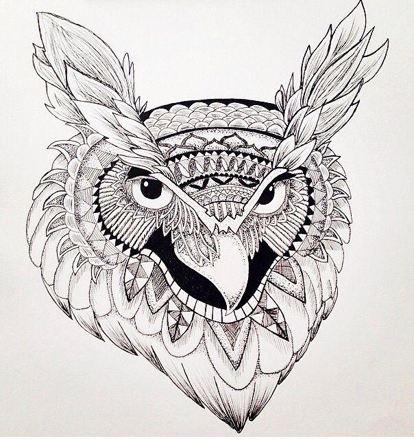 Owl, pen drawing - Chloe Worswick