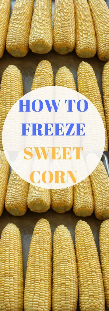 Learn how to freeze corn in simple steps. How to freeze corn recipe. Pin to save for later.