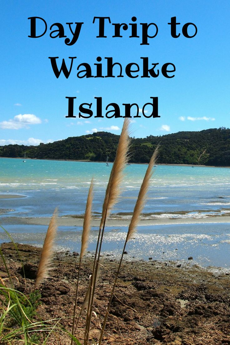 Waiheke Island, filled with great wineries, beaches, and views, makes for a perfect day trip from Auckland, New Zealand.