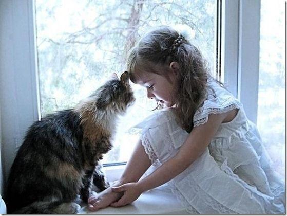 koty i dzieci - Google zoeken