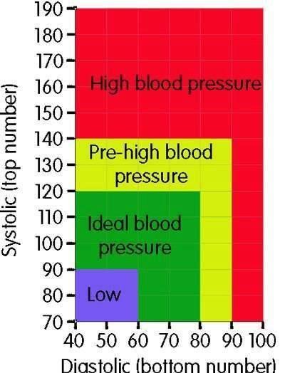 Blood Pressure Chart @Abby Christine Christine Patterson