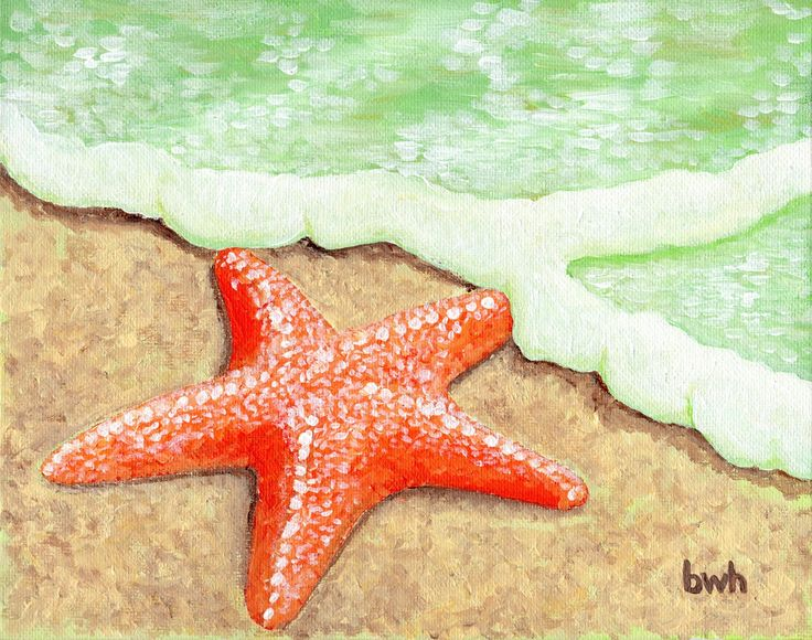 paintings of starfish - Google Search