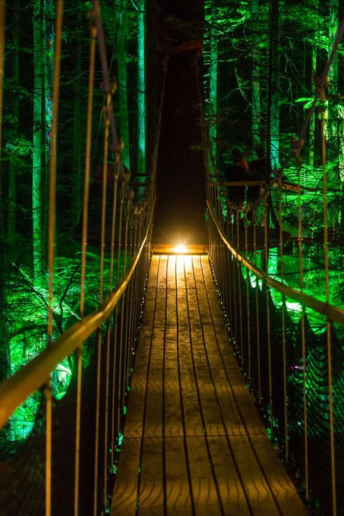 The Redwoods Treewalk in New Zealand The Redwoods Treewalk is a over half a kilometer long walkway that consists of a series of 23 suspension bridges traversing the gaps between 22 majestic 110-year-old Redwood trees.The bridge sections gradually...